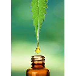 CBD oil DigitPharma 1000mg